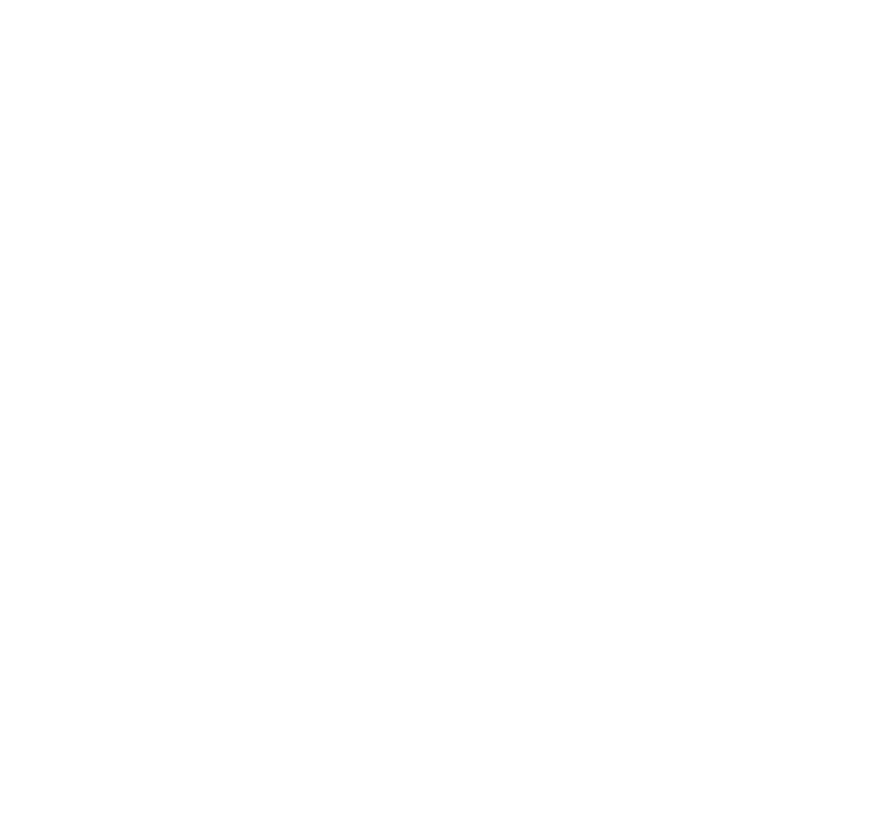 Apex Precission
